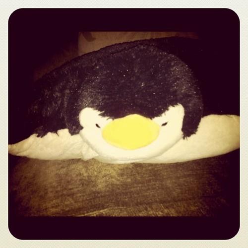 The Penguin Pillow Pet stalks me when I sleep