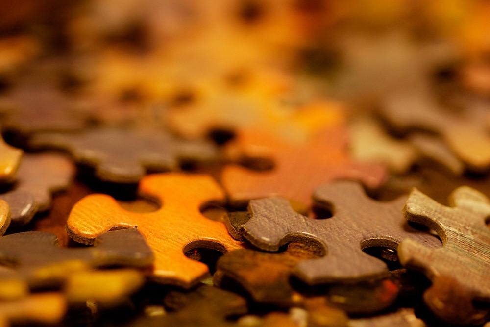 Macro 1/31:  Puzzling