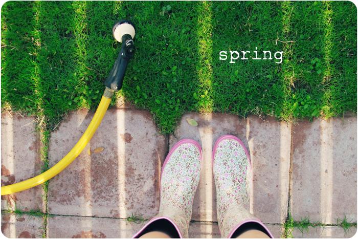 springfeetblog