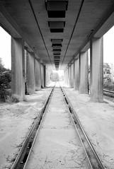 Rails (l'inconnu du placard) Tags: leica bw architecture vanishingpoint columns rails m8 sw bahn gleise sulen zm fluchtpunkt cbiogont4521 zeiss4521mm