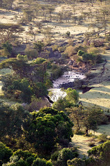 Maasai Mara From The Air (masaiwarrior) Tags: photographyworld peaceaward kenya2010 auniverseofphotography