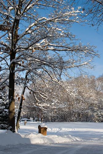 snow7-fullsun