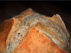 Artisan Bread in 5 Minutes a Day - European Peasant Bread