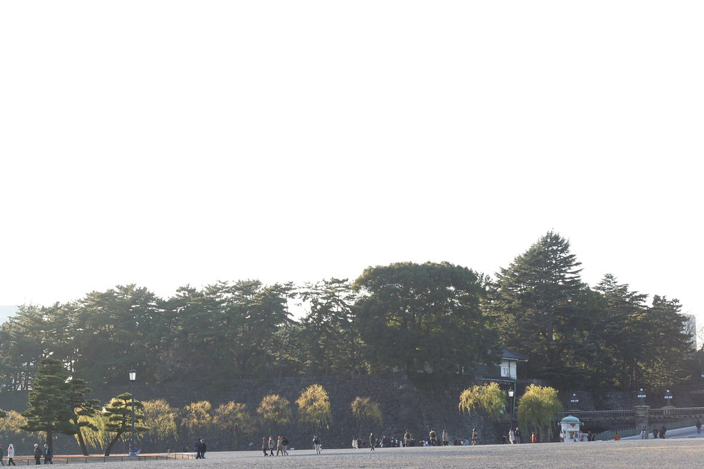 view of imperial palace park.