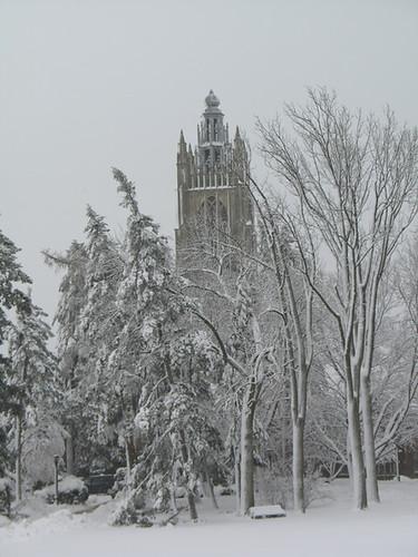 January 12 2011 snowstorm 7