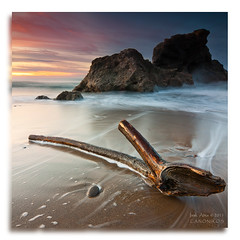 Wet Wood `[Explore Front Page] (saki_axat) Tags: longexposure sea seascape tree beach water marina arbol atardecer eos mar stem madera sand agua rocks waves country playa arena explore filter trunk tronco frontpage olas bizkaia basque hitech rocas bakio euskal herria 50d gnd8 colorphotoaward