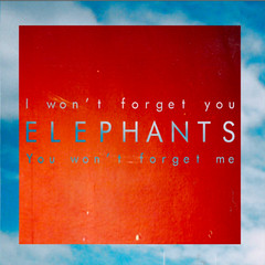 Elephants Won't Forget