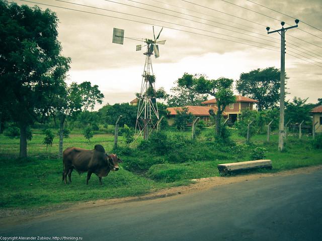 Урбанизация в деревне