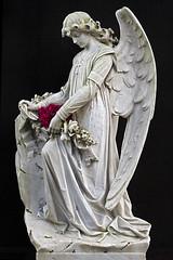 Angel (NRG Photos) Tags: flowers friedhof black cemetery grave angel memorial blumen engel grab schwarz frankfurtammain kokomo denkmal hauptfriedhof maincemetery