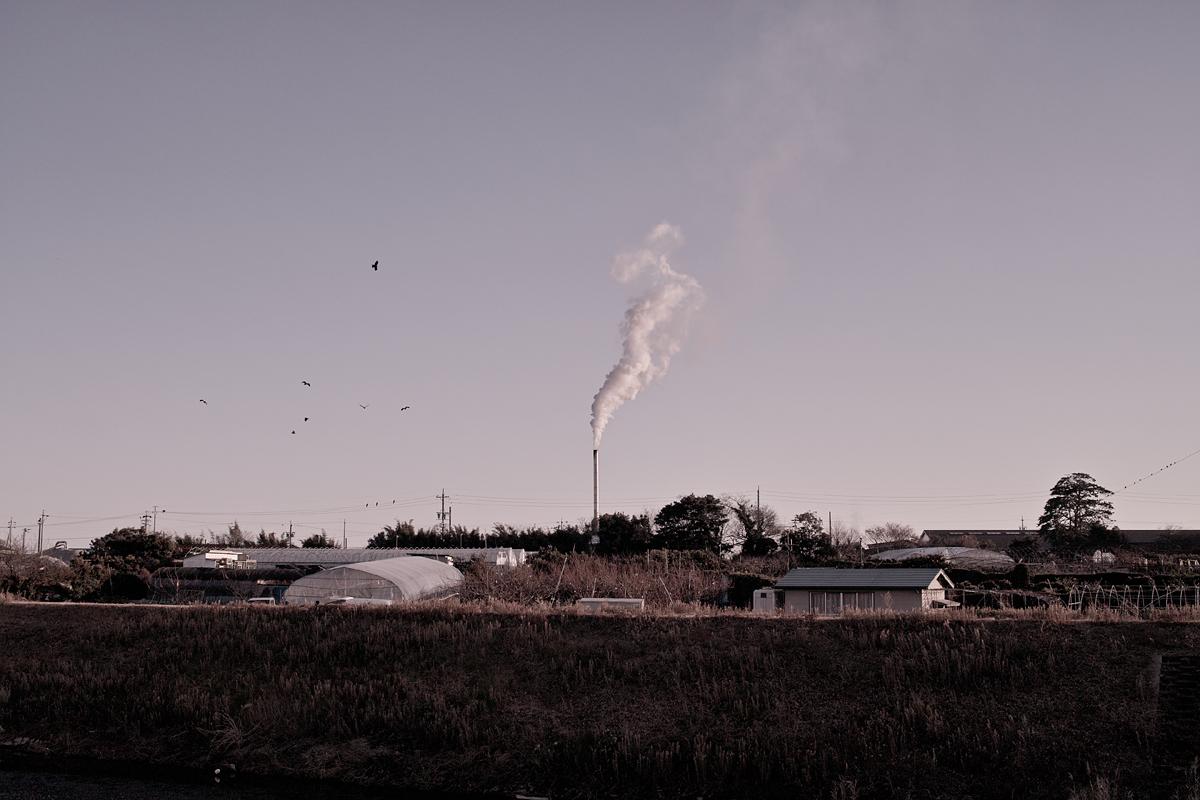 2011-01-22 叙景 landscape - sigma dp2 -