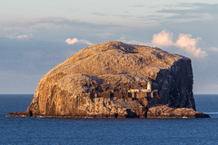 Golden Bass Rock (dalejckelly) Tags: canon seaside north berwick east coast coastline sea ocean landscape bass rock golden hour blue outdoor scotland scottish autumn sunset