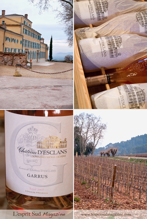 Château d'Esclans  - Garrus rosé (The most expensive rosé in the world!)