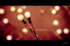 ««« Lights