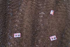 Foto_daniel_churechawa_emotional_landscape-1090843 (Churechawa) Tags: snow art modern composition contrast creativity photography photo artist view contemporary hill fine creative picture poetic mind lovely elegant delicate author graceful epic minimalistic stylish pictorial imaginative mastery lyric harmonious pleasing inventiveness panasoniclx3 minimalisticlandscape emocionallandcape landscapesnowlandscape eligiac