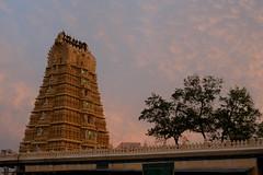 Mysore 027