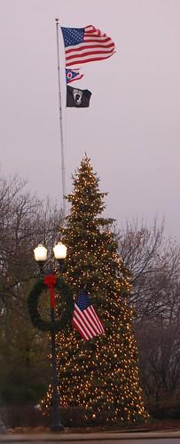 Perrysburg tree