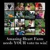 We need YOUR help! (mindwhisperings) Tags: gmofreeworld amazingheartfarm gmofreeandorganicworld sansogmgmofreeusa consumerssupportsmallfarmers