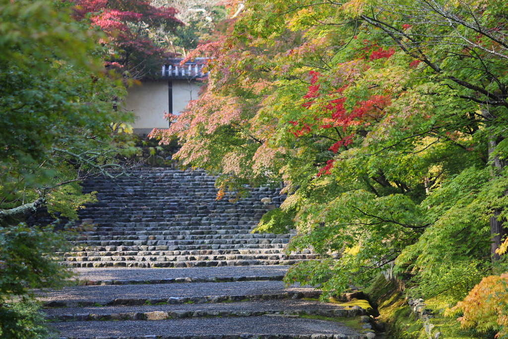 Kyoto, the city of Japanese traditions and culture Part3 (4)