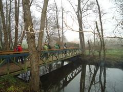 Ruta Río Miño (Lugo)