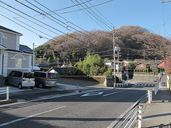 KonpiraYama Photo