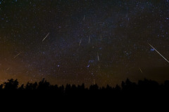 A Christmas Meteor Light Show: The 2010 Geminids (Fort Photo) Tags: nature composite skyscape stars landscape nikon colorado nightscape astrophotography orion co astronomy gemini meteor 2010 larimer geminids shootingstar geminid meteorshower 80c laramiefoothills nikon1735 geminidmeteorshower d700 Astrometrydotnet:status=failed widefieldastrophotography Astrometrydotnet:id=alpha20101200426598