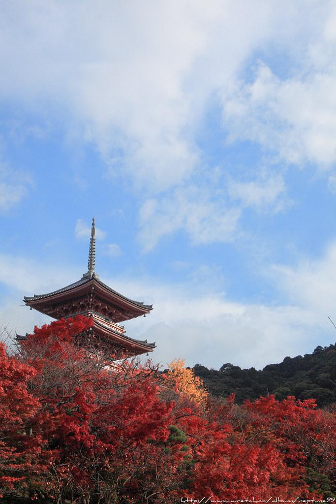京阪散策 洛東篇