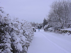 Snow, Gas Street, Haslingden