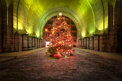 Merry Christmas from under the Manhattan Bridge (mudpig) Tags: christmas xmas nyc newyorkcity longexposure holiday newyork tree brooklyn night geotagged dumbo manhattanbridge gothamist merry hdr mudpig stevekelley