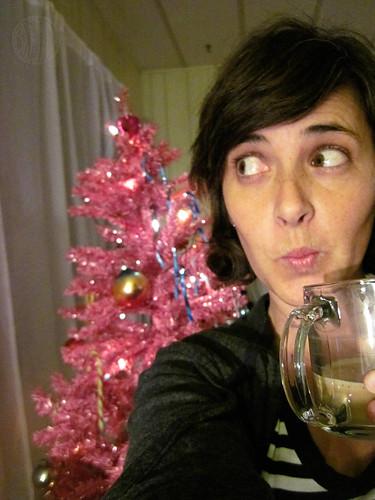 7 Days, Day 1: I spy Christmas