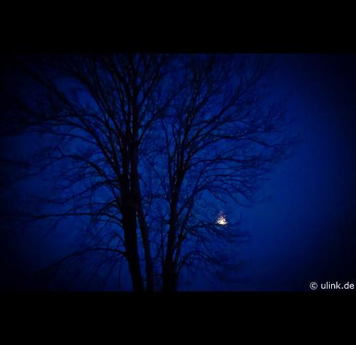_blue_moon