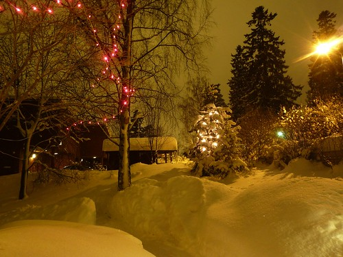 Christmas Lights by timo_w2s