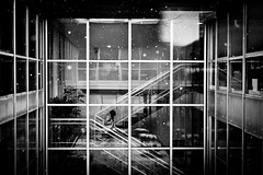 Leaving (Alexander Ipfelkofer) Tags: windows winter bw woman snow glass stairs reflections leaving grid snowflakes blackwhite office squares f14 candid streetphotography pinhole frame canonblackwhite