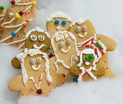 From My Family to Yours (SavingMemories) Tags: christmas family cookies festive happy baking faces gingerbread smiles icing merrychristmas familyportrait sugarcookies seasonsgreetings frommyfamilytoyours savingmemories suemoffett moffettfamily