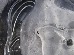 moving no more (Ellen Bulger) Tags: winter ice nature woods connecticut woodbridge wepawaugriver