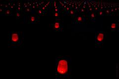 champ de pixels (dzpixel) Tags: christmas red night lights weird experimental mtl perspective noel dot pixel xp vanishing vaniche