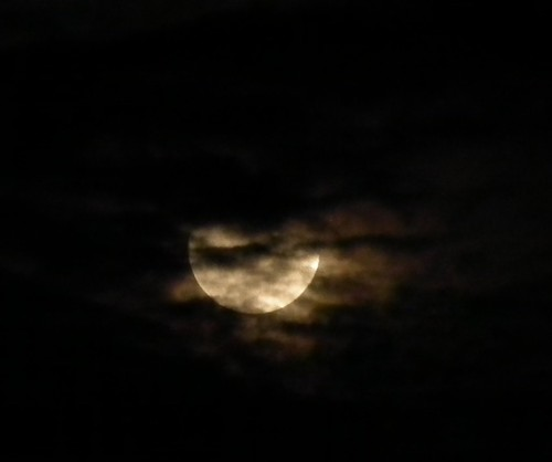12/26更待月と雲