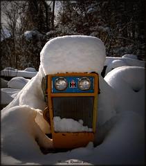 A new hood ornament (History Rambler) Tags: snow northcarolina ih nashcounty cubcadet124