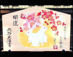 Happy New Year 2011  (Marie Eve K.A. (Away)) Tags: japan painting kyoto shrine olympus lucky   greeting japon  happynewyear  ep2   2011  bonneanne  woodenplaque  kitanotenmang    2010