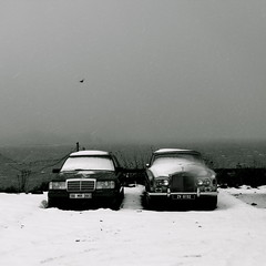 tiger on ice (tartalom) Tags: howth dublin snow cars mercedes rollsroyce merc tartalom christophersweeney obscuredbysnowdrop