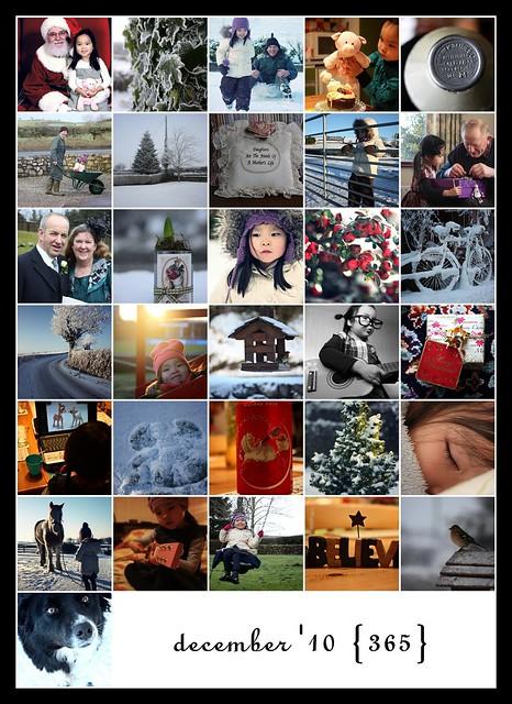 December: 215 - 245/365