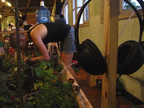 cinthia mendonça (Um jardim para Epicuro)