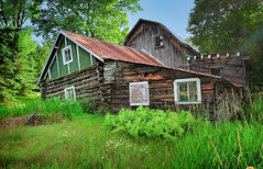 """Good ol'e Day's""  Michigan's Ottawa National Forest (Michigan Nut) Tags: old usa green barn photography rust michigan logcabin ferns recent oldcabin oldbarn shanny historicbuilding ottawanationalforest"
