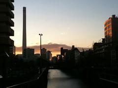 朝の風景:朝の散歩、午前7時。(2011/1/10)
