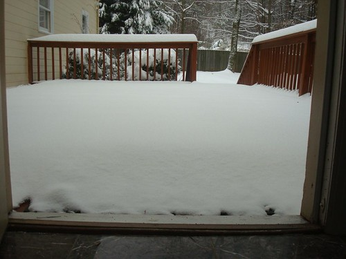 Snowmaggedon 2011