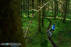 DSC_4200 (JacobGibbins.co.uk) Tags: uk england orange mountain bike wales cycling nikon track dj cross jacob country north bikes single mtb missile xc rowan sorrell st4 gibbins