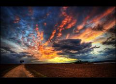 Sunset @ Strohgu (Kemoauc) Tags: sunset sky cloud cute photoshop sunrise germany deutschland nikon sonnenuntergang sundown himmel wolken hdr topaz wrttemberg d90 photomatix hemmingen nikond90 strohgu hdrterrorist kemoauc