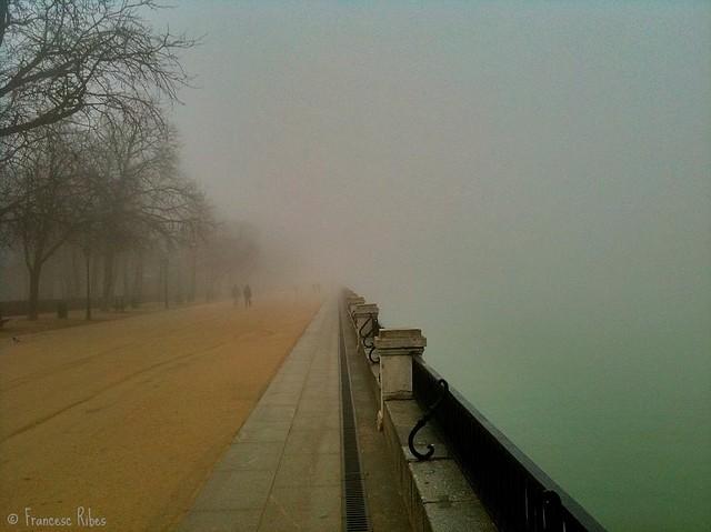 (267) Mas niebla