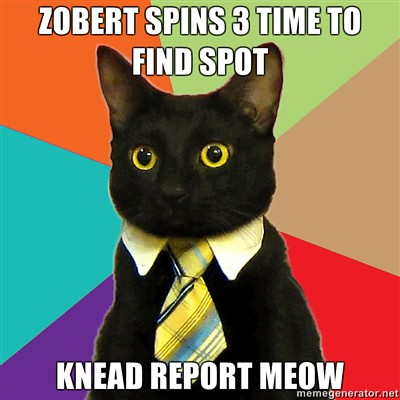ZOBERT-SPINS-3-TIME-TO-FIND-SPOT-KNEAD-REPORT-MEOW