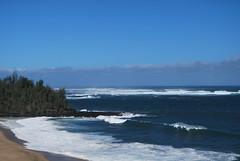 DSC_0102 (johnhane) Tags: temp park travel outdoors hawaii january delete hike trail kauai kalalau napali napalicoast 2011 kalalautrail haenastatepark