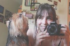 21/365 having fun with Spock (Honey Pie!) Tags: camera dog espelho canon mirror room yorkshire days honey cachorro spock quarto 365 cmera 365days 365daysproject 365dias 365daysofhoney